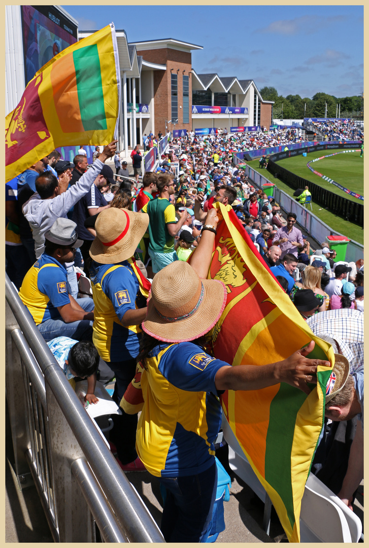 sri lankan fans at the riverside ground 4