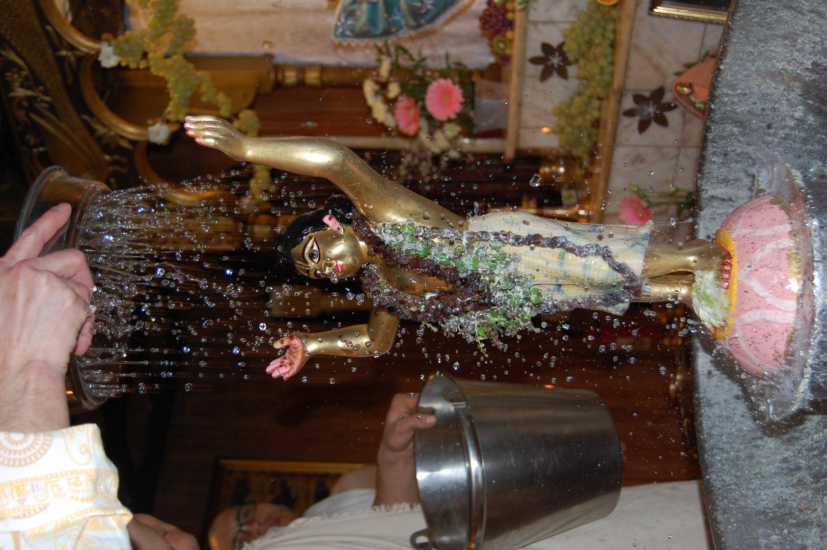 Sri Sri Gauranga's abishek