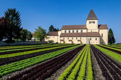 St. Georg und der Salat