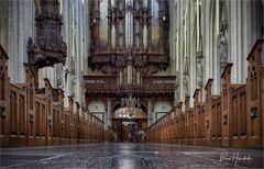 St.-Johannes-Kathedrale zu 's-Hertogenbosch