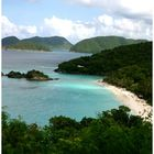St John Beach Trunk Bay
