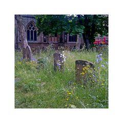 St. Mary Magdalen's Church Graveyard