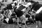 St. Pauli Rugby Herren 16