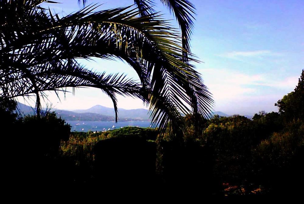 St Tropez cet été...