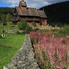 Stabkirche & Weidenröschen