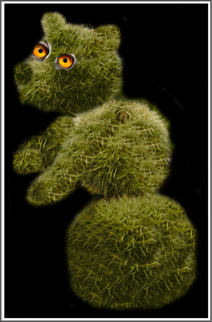 Stachelbär Foto Bild Fotomontage Fantasy Mystery Fun Montagen