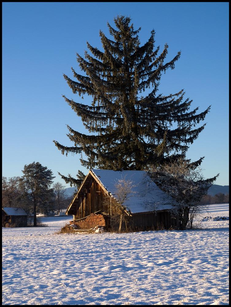 Stadel im Winter