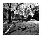 Stadtbäume 3