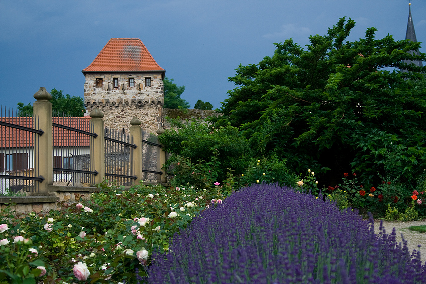 Stadtmauer-Turm