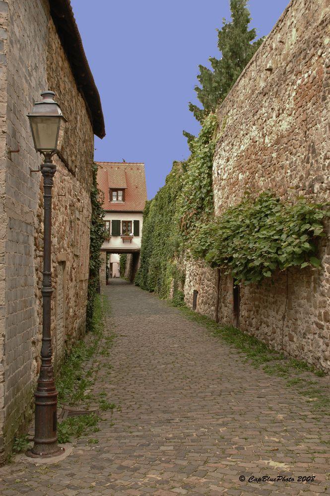 Stadtmauerweg in Freinsheim