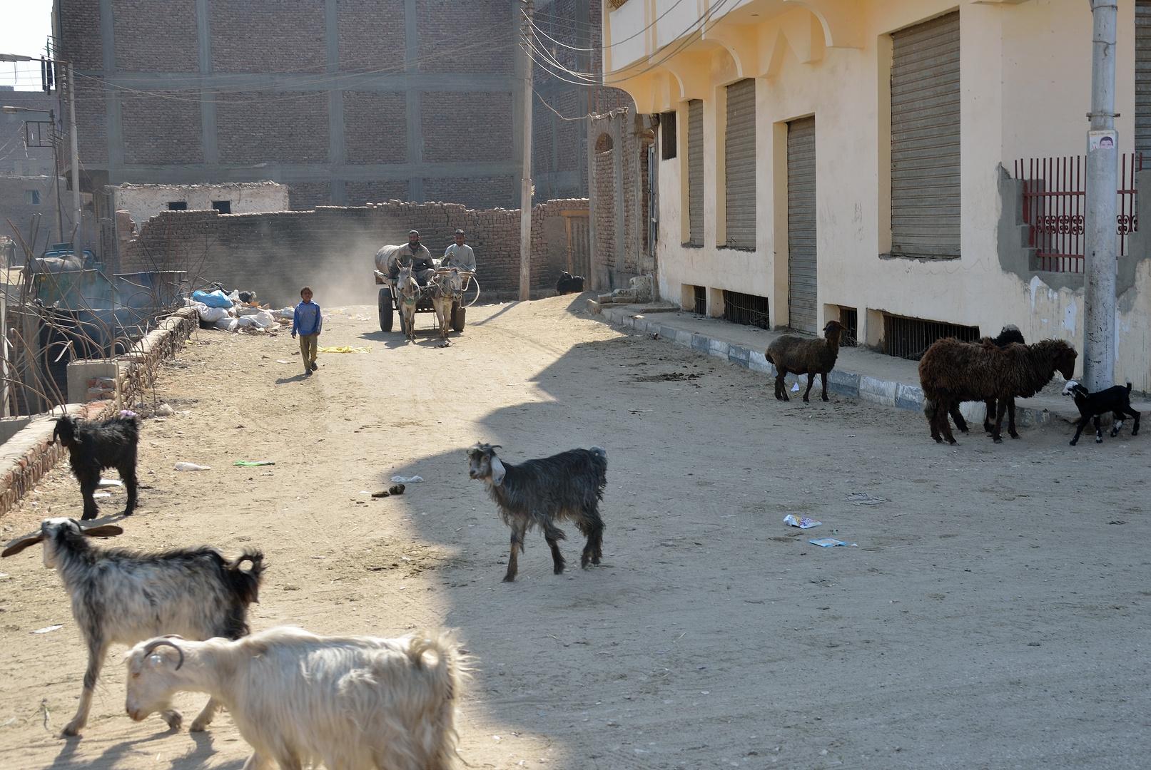 Stadtmitte von Luxor