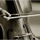 Stadtmusik