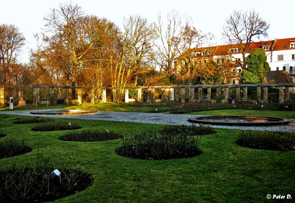 Stadtpark Fürth #4