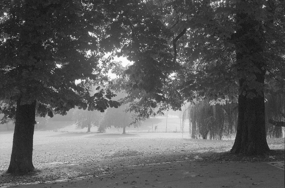 stadtpark stuttgart analog 01