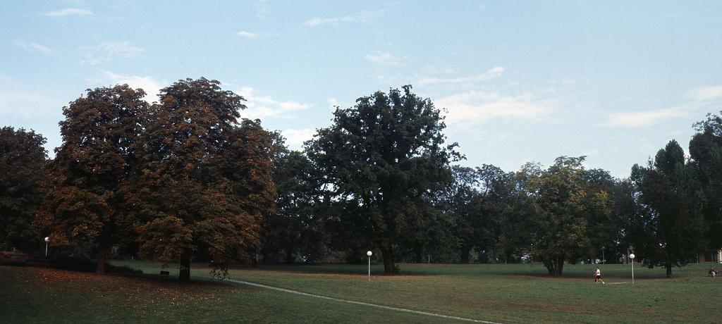 stadtpark stuttgart analog 04