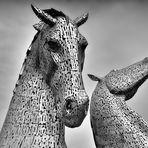 Stahl Wild   --   Riesen Kelpies   ©D4731---IP_BW-p-05