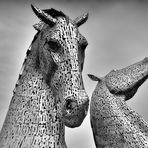 Stahl Wild   --   The Kelpies   ©D4731---IP_BW-p-05