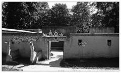 Stallungen in Beth Juda