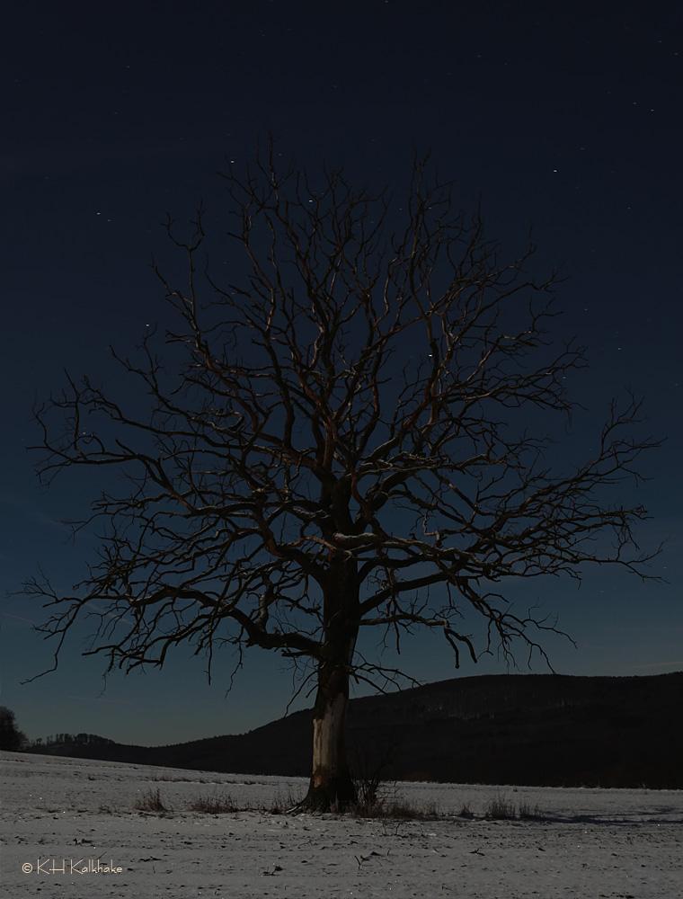 stand alone - II