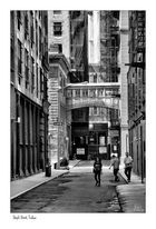 Staple Street, Tribeca