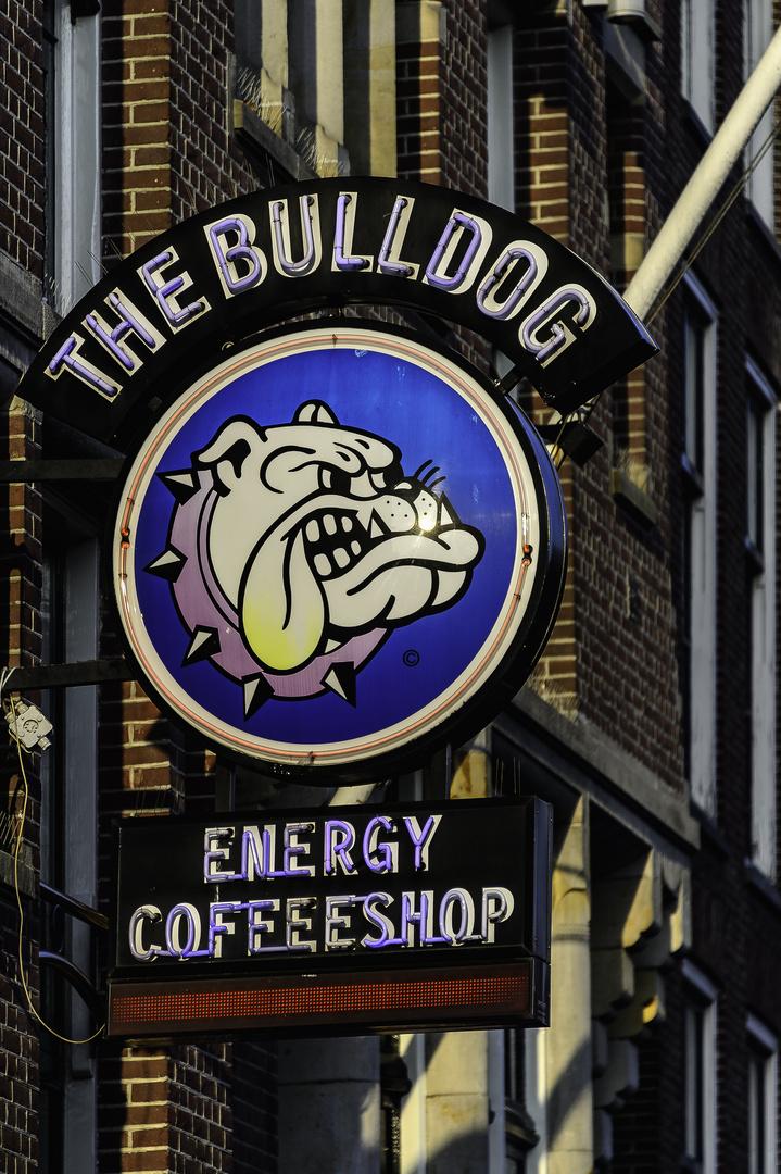 Starker Kaffee Zum Dammschutz