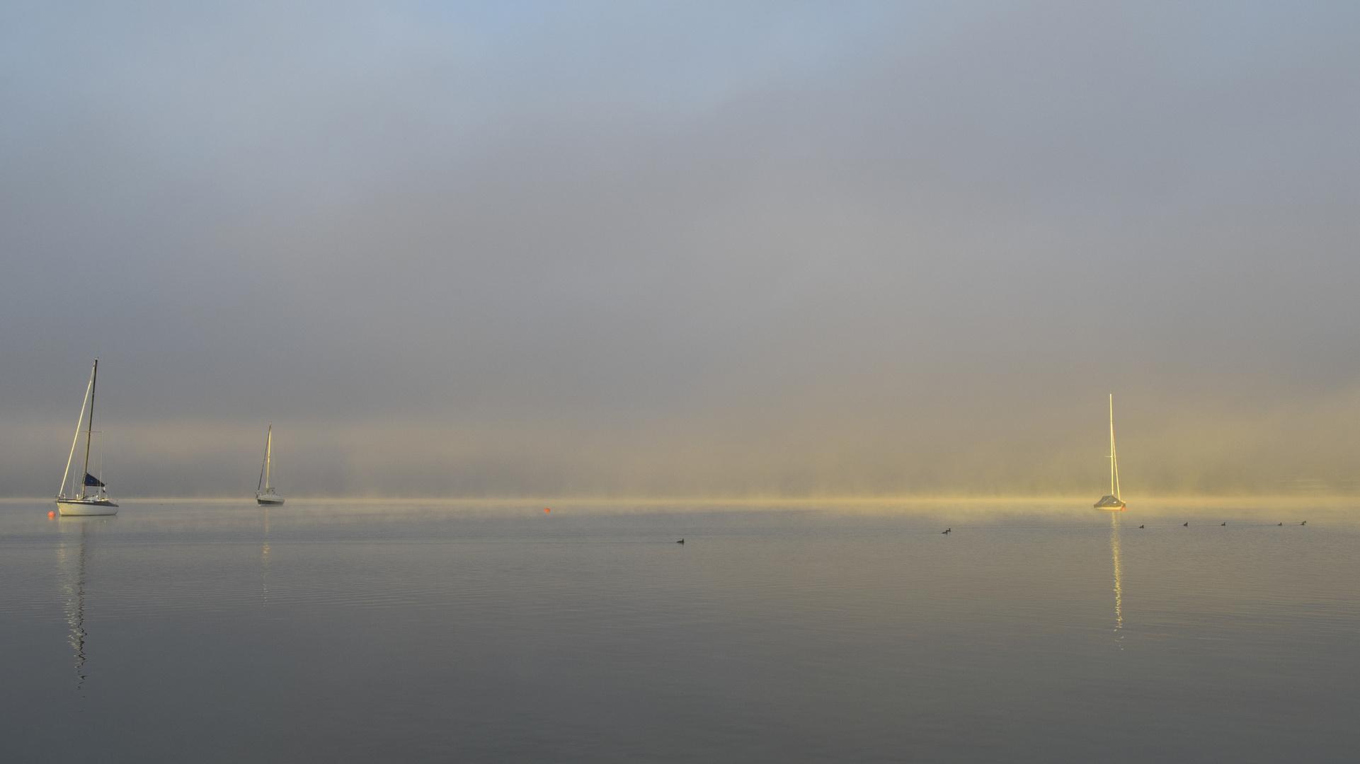 Starnberger See im Nebel 25.9.