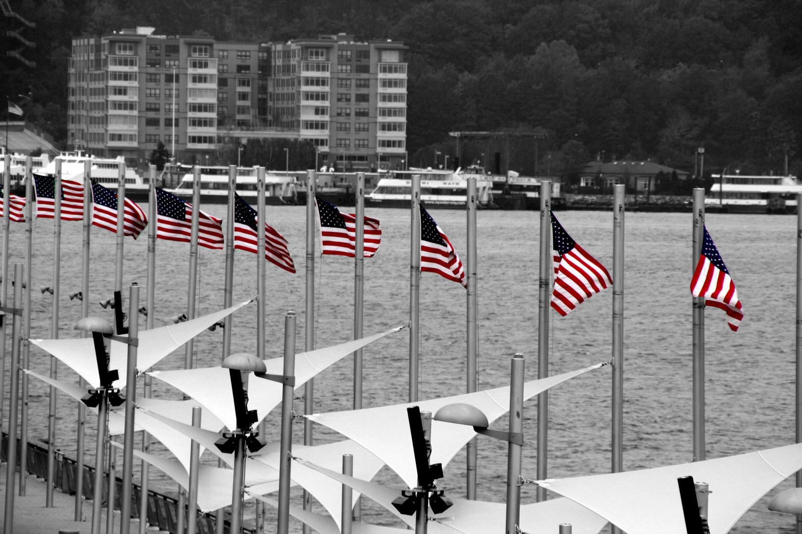 Stars and Stripes - New York 2010