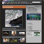Startseite fc.de – 12.4.2011