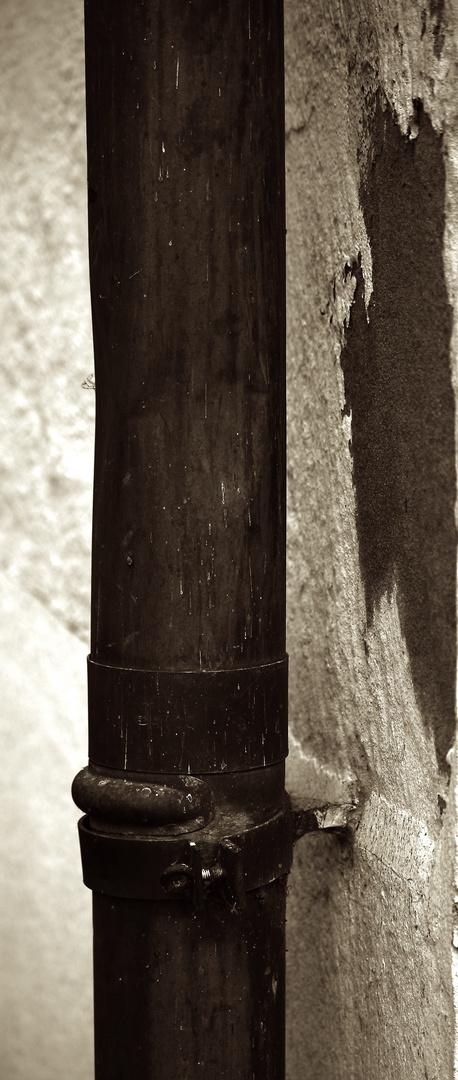 Statt eines Baumes