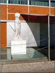 « Statua »