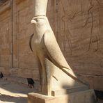 Statue des Falkengottes Horus vor dem Tempel in Edfu