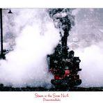 Steam in the Snow No.4
