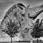 Steel Head   --   The Kelpies   ©D4755--X_BW-F2