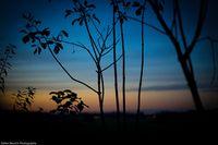 Stefan Beusch Photography