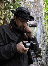 Stefano Tordini