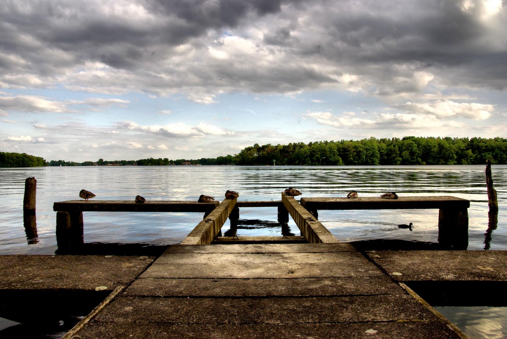 Steg am Langen See