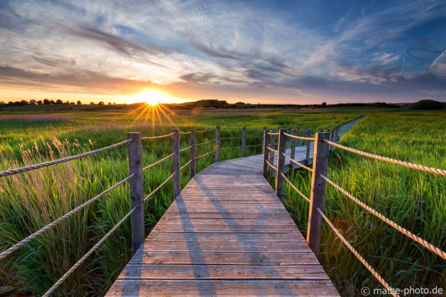 Steg im Sumpf bei Hejlsminde