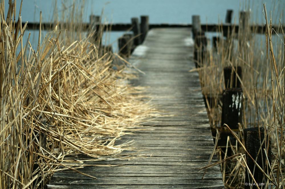 Steg zum See