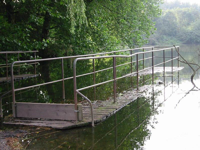 Stegunter am Ewaldsee (Herten)