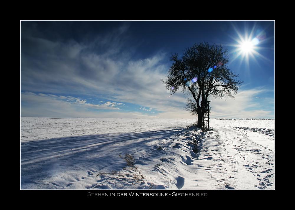Stehen in der Wintersonne
