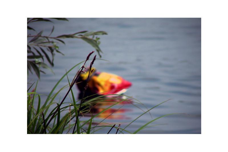stehendes gewässer, das mit dem meer nicht unmittelbar verbunden ist (III) (21.07.06)