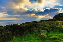 Steilküste auf der Halbinsel Howth