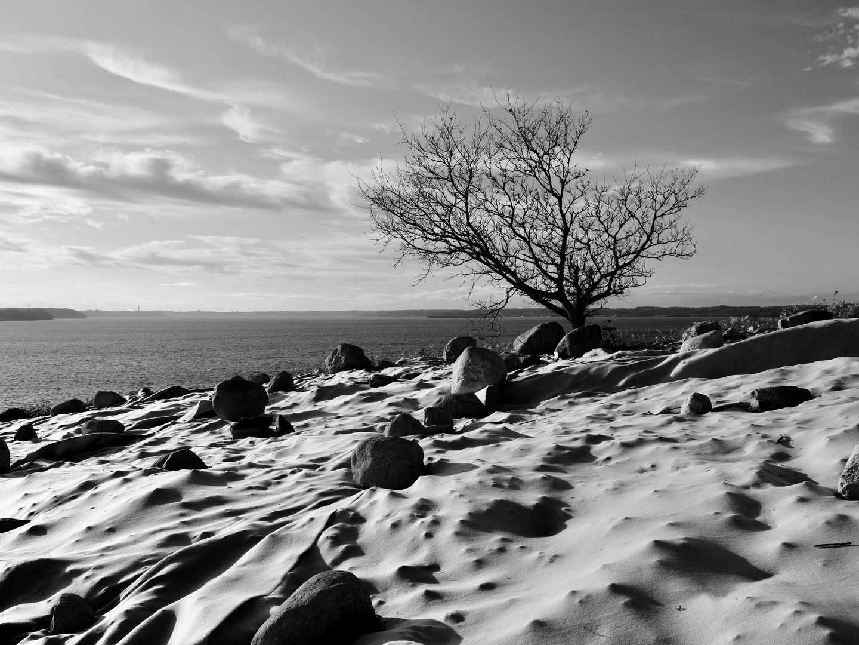 Steilküste Holnis