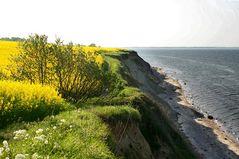 Steilküste zwischen der Kieler Förde und der Eckernförder Bucht