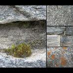 -stein-