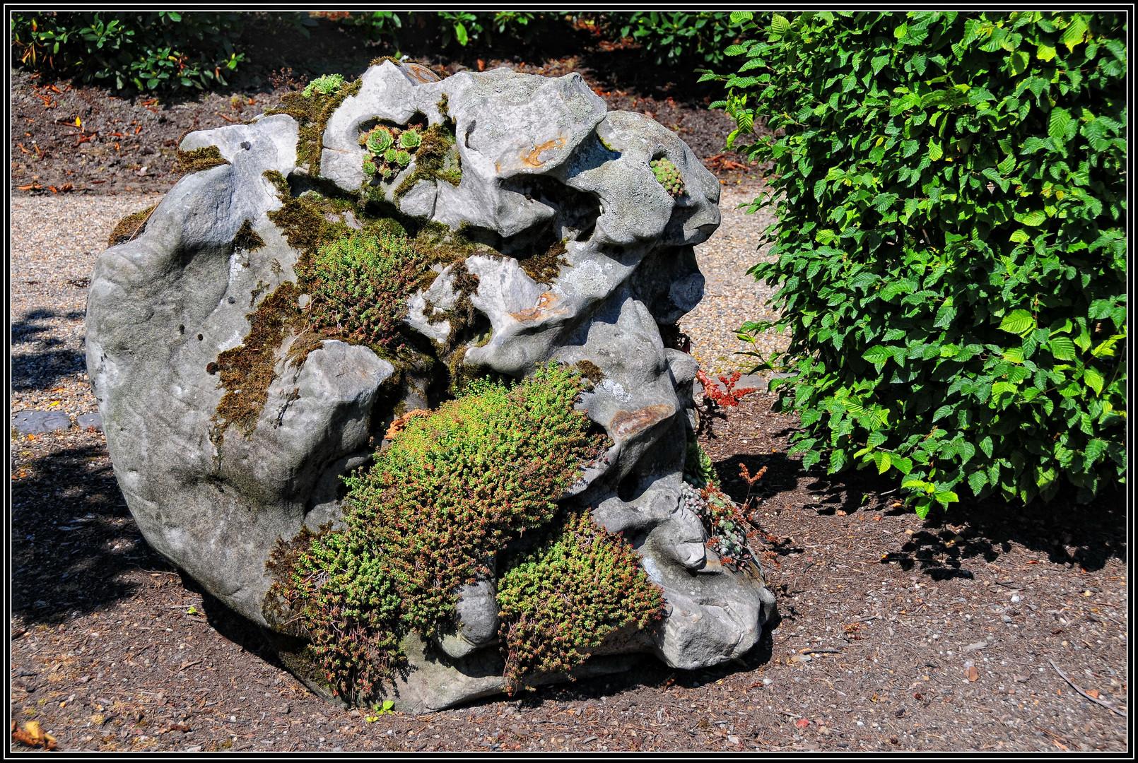 Stein-Garten Foto & Bild   natur, pflanzen, steine Bilder auf ...
