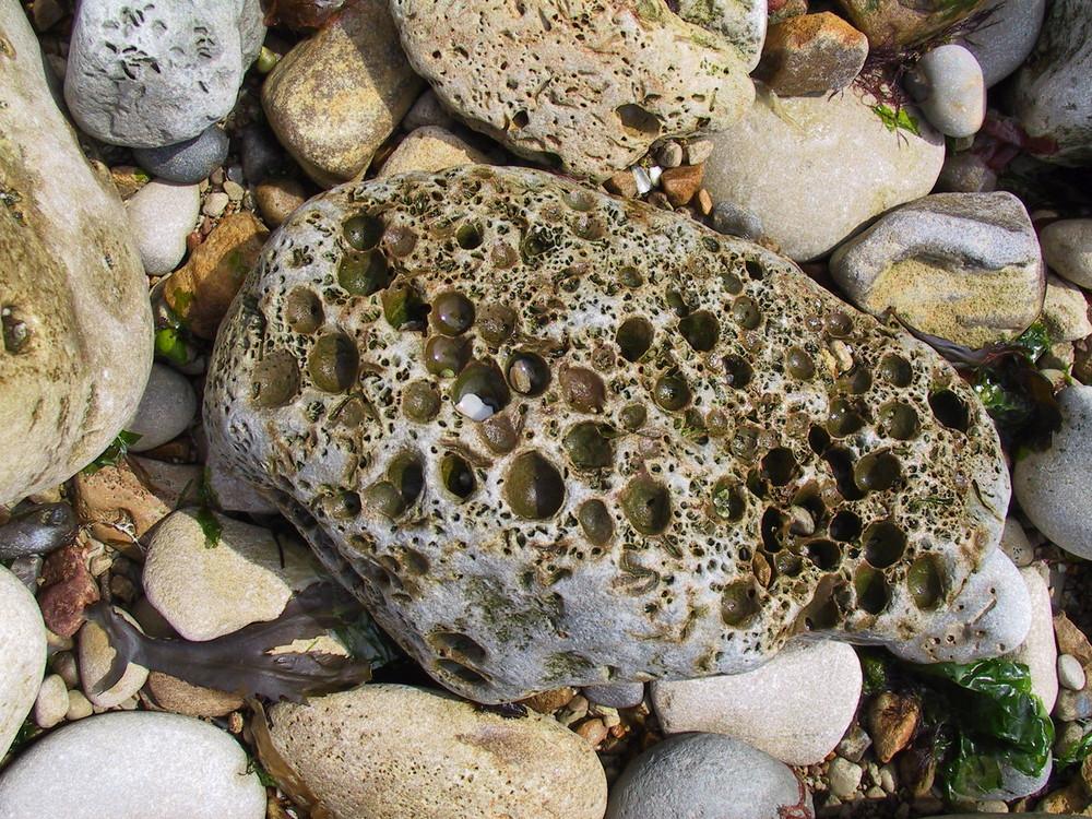 steine am strand in der normandie 2