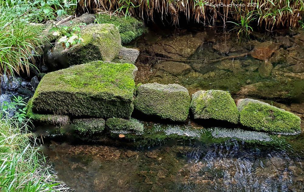 Steine im Bachbett des Kaltenbachs