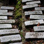 Steine im Weg.....