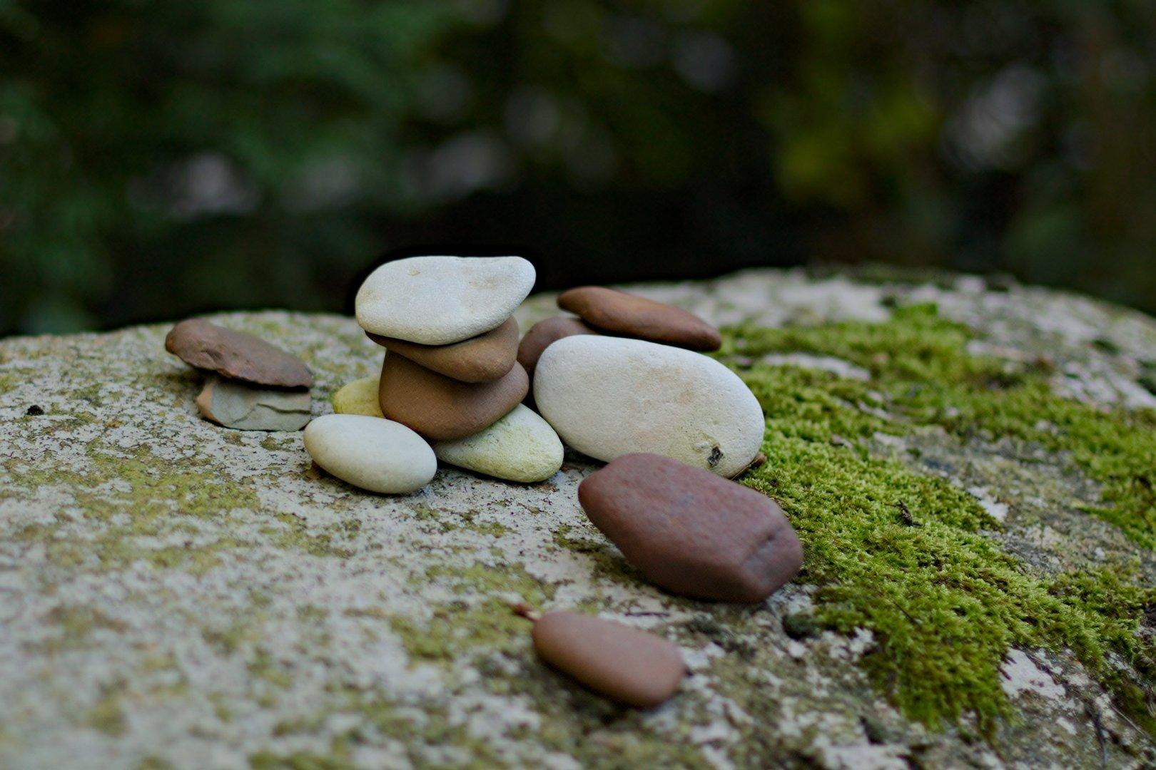 Steine mit Moos